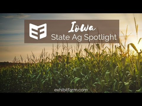 State Ag Spotlight: Iowa Ag Facts