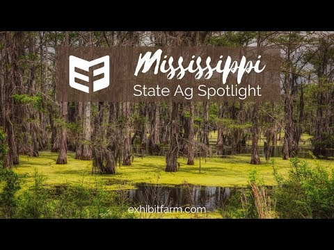 State Agriculture Spotlight: Mississippi Ag Facts