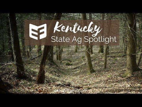 State Ag Spotlight: Kentucky Ag Facts