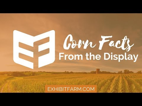 From the Display: The Wide World of Corn Facts