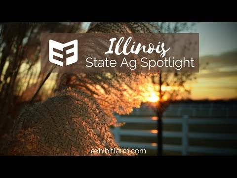 State Agriculture Spotlight: Illinois Ag Facts