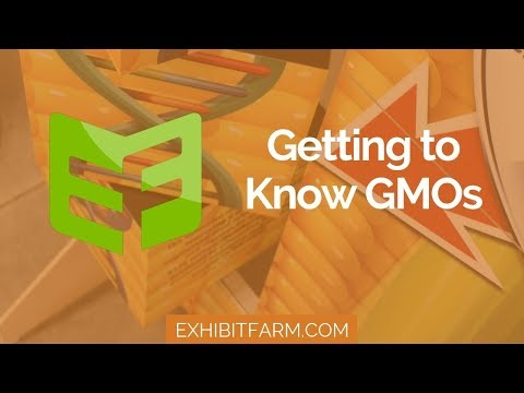 Getting to Know GMOs: The Standup GMO Display