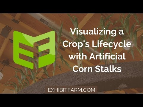 This Corn Isn't Real: Visualizing a Crop's Lifecycle with Artificial Corn Stalks