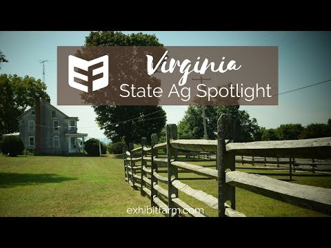 State Agriculture Spotlight: Virginia Ag Facts