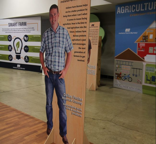 Stand-Up Display 01