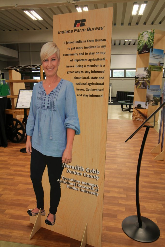 Stand-Up Display