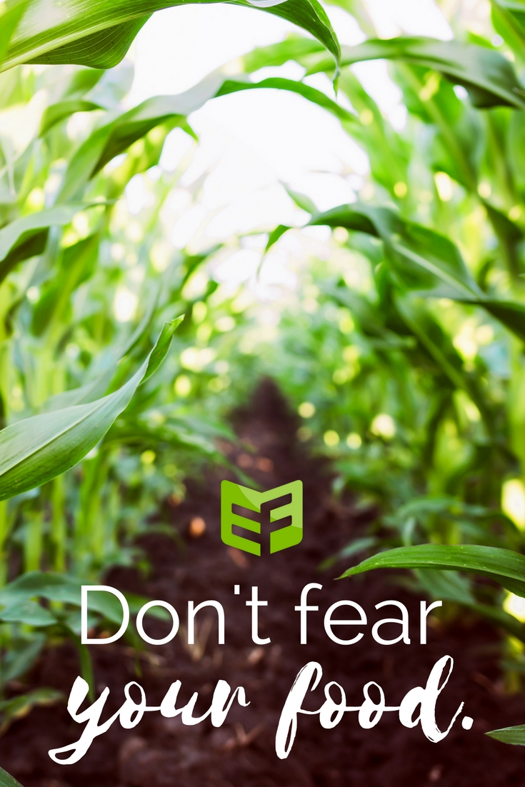 Don't Fear Food Pinterest (new)