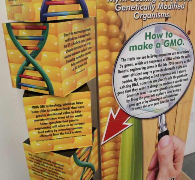GMO Display 02