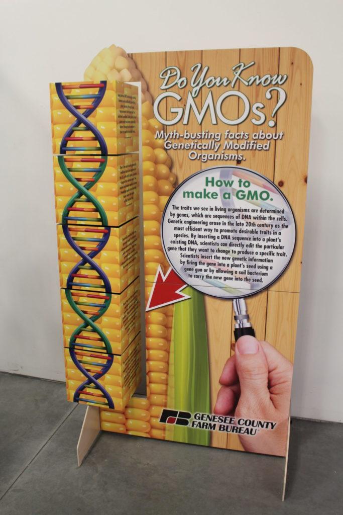 GMO Display