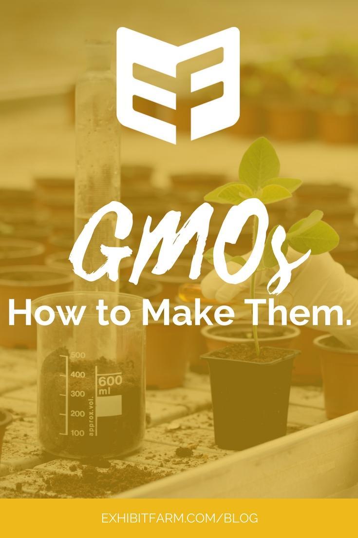 GMO Content 03 Pinterest