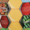 Closeup of four hexagonal panels on the Buzz about Bees display, showing them partly rotated