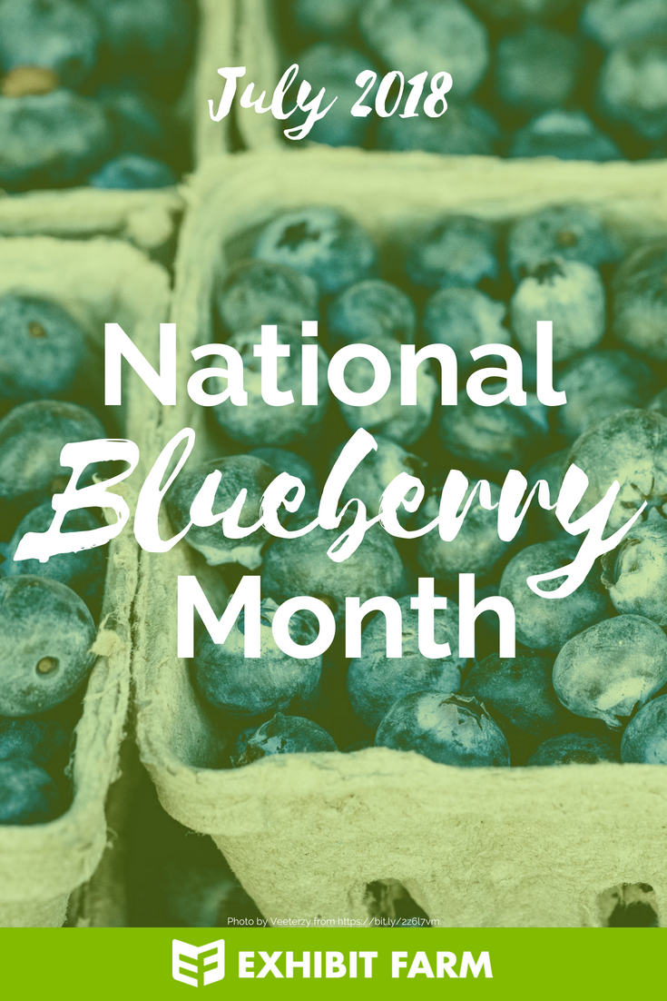 Blueberry Month Promo