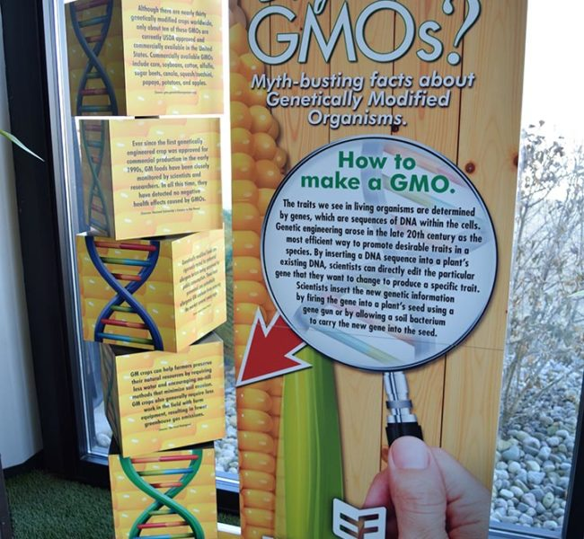 GMO Display Standup