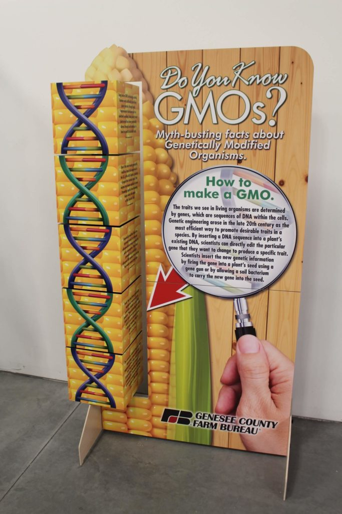 Full view of the standup GMO display, showing the front text panels and the rotating boxes on the left side