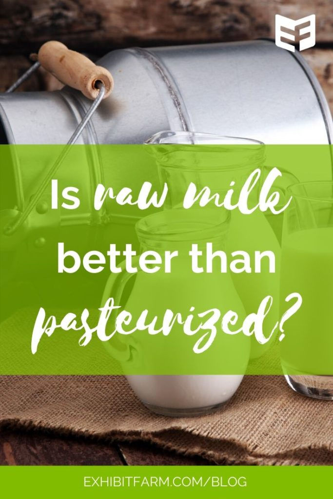 Photo shows a milk can and three pitchers of milk. Text explains article is about raw milk vs. pasteurized milk.