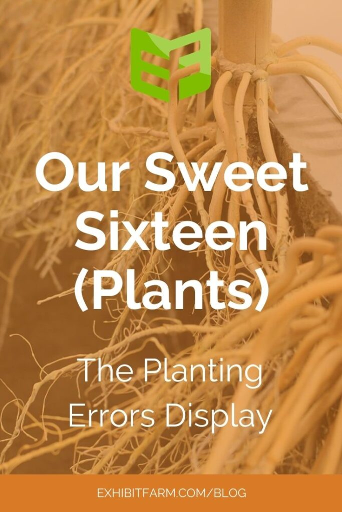 "Orange graphic; text reads ""Our Sweet Sixteen (Plants): The Planting Error Display"""
