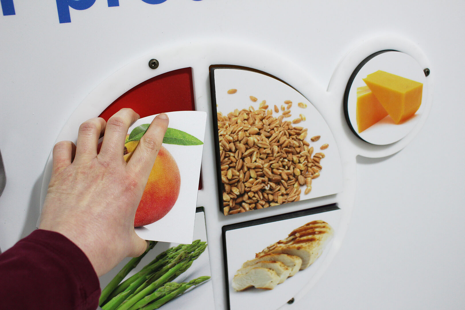 Hand adding a piece to the plate on the interactive food choices display