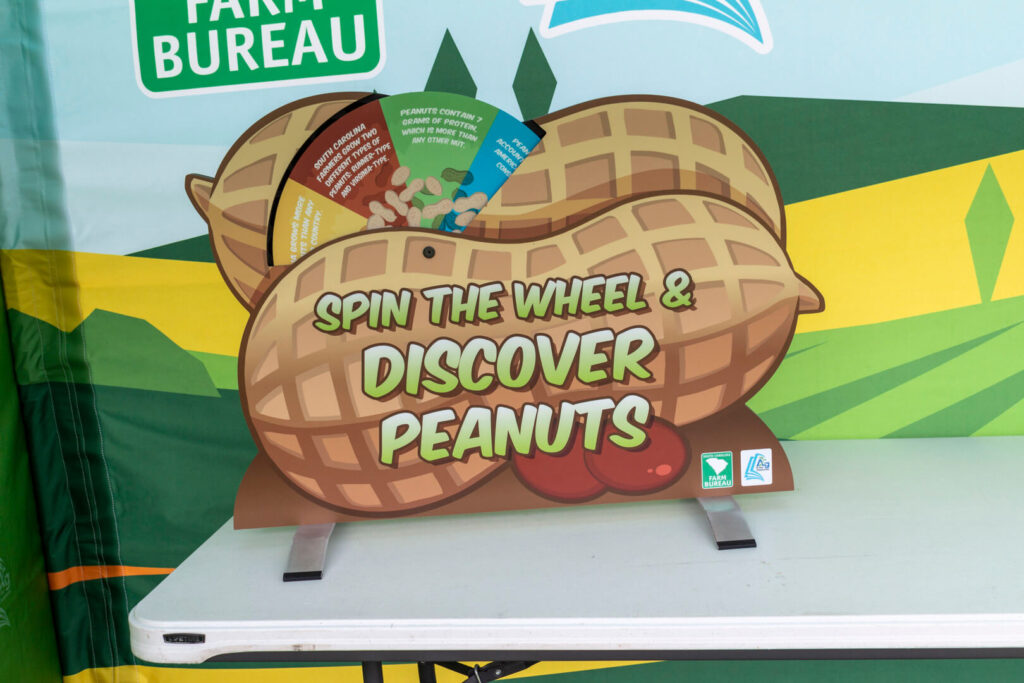 One side of the tabletop peanut display, featuring a wheel to spin with facts written on it
