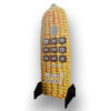Standup display about field corn, with graphics showing a dry corncob