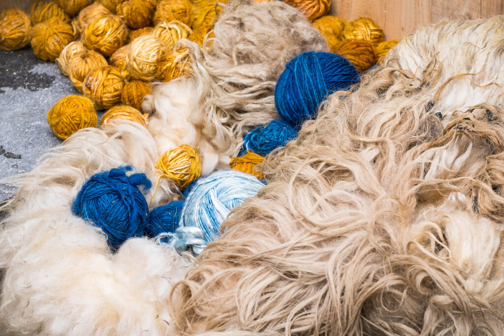Balls of yellow and blue yarn in a pile of raw wool